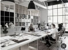 Monochrome with naturals office theme