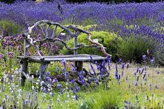 Love this bench - must try to make one someday! #garden #bench