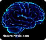 Improve memory loss by using natural alternatives