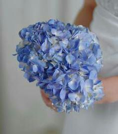 Simple Bride's Bouquet Of Blue Hydrangea