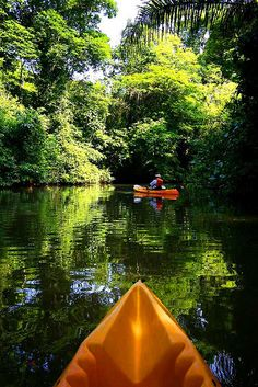 Costa Rica Adventure. Although I don't even want to think of what might be lurking in the water