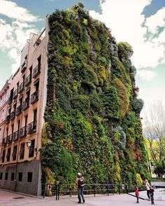 #Greenery on builsings  The #greenwall of Caixa Forum is designed by Patrick Blanc and is located in #Madrid #Spain // Photo by @anlinsh #restlessarch - Architecture and Home Decor - Bedroom - Bathroom - Kitchen And Living Room Interior Design Decorating Ideas - #architecture #design #interiordesign #homedesign #architect #architectural #homedecor #realestate #contemporaryart #inspiration #creative #decor #decoration