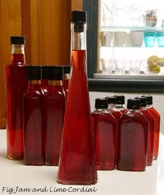 This year's plum brandy is mighty fine. It's really more of a liqueur than a brandy, and we make it whenever we can get our hands on some President plums… The process is simple &#…
