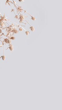 Floral Wallpaper Phone, Gold Wallpaper Background, Framed Wallpaper, Phone Wallpaper Images, Aesthetic Pastel Wallpaper, Flower Wallpaper, Mobile Wallpaper, Wallpaper Backgrounds, Aesthetic Wallpapers