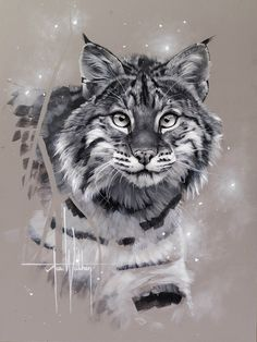 Новости Animal Sketches, Art Drawings Sketches, Animal Drawings, Beautiful Cats, Animals Beautiful, Cute Animals, Big Cats Art, Cat Art, Buda Wallpaper