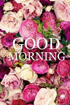 May you begin this day with a smile on your face,and with happiness for your soul to embrace. Good Morning my love.