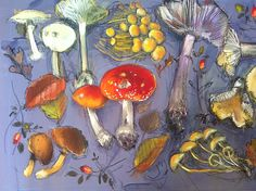 Felicity House is an award winning Dorset based Artist, primarily working in Pastels. View the artwork by Felicity House. Mushroom Art, Mushroom House, Vegetable Drawing, Woodland Plants, Plant Art, Plant Illustration, Food Illustrations, Home Art, Painting & Drawing