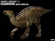 Walking with Dinosaurs - Fact File: Iguanodon Dinosaur Facts, Dinosaur Images, Dinosaur Pictures, Walking With Dinosaurs, Short Faced Bear, American Lion, Ground Sloth, Bbc, Roman Love