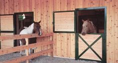 exterior paddock doors: Look for solidly welded pre-hung metal framed paddock doors for weatherproofing and ease of installation Barn Stalls, Horse Stalls, Dream Stables, Dream Barn, Classic Equine, Farm Barn, Horse Farms, Dutch Doors, Sick Dog