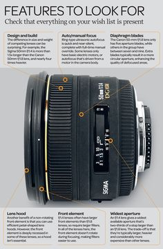 Best 50mm lens for your camera: 8 'Nifty Fifty' lenses tested and rated | Digital Camera World - page 2