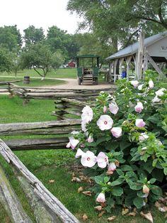 Amish Acres, Nappanee, Indiana   Travel Photos By Galen R Frysinger,  Sheboygan,