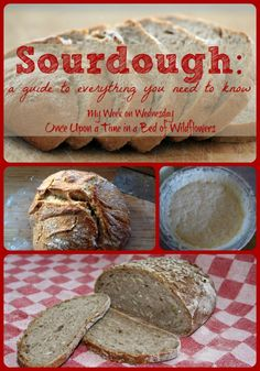 Sourdough // Once Upon a Time in a Bed of Wildflowers