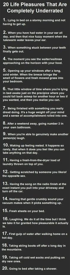 20 Life Pleasures