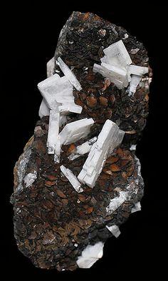 Barite crystals atop siderite. Source: White Raven Mine, Ward District, Boulder County, Colorado, United States of America.