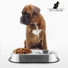 The Pet Prior pet food & water bowl has a large capacity and is perfect for extra-large pets! Non-slip base. Dog Food Bowls, Pet Bowls, Dog Tumblr, Dog Feeder, Love Your Pet, Dog Crafts, Homemade Dog Treats, Large Animals, Diy Stuffed Animals