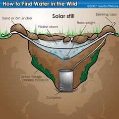 """HowStuffWorks """"Water Collection Techniques"""""""