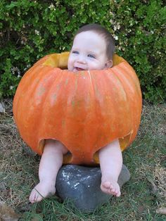 My brother grew a huge pumpkin....it was the perfect size to sit a baby in!