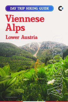 Let it be clear, technically there is no such thing as the Viennese Alps, but for pragmatic reasons, it is common to use this name, when referring to the mountains, located close to the Capital of Austria. The focus of this article is to help the first-timers to find the best hiking regions and trails around Vienna within day trip limit. All of the hiking and outdoor destinations listed in this article could be reached by public transport in 1-2h. #Europe #Austria #Vienna #ConnectingVienna Europe Travel Outfits, Europe Travel Guide, Vacation Ideas, Amazing Destinations, Travel Destinations, Travel Ideas, Travel Inspiration, Day Trips From Vienna, Europe Holidays