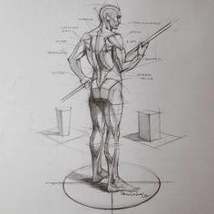 "14.7k Likes, 49 Comments - FERHAT EDİZKAN (@edizkan) on Instagram: ""Analytical anatomy study #artsy #study #illustration #drawing #dessin #figuredrawing #sketch…"""