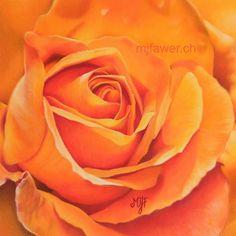 Rose orange au pastel sec Crayons Pastel, Pastel Pencils, Rose Pastel, Pastel Art, Rose Orange, Flower Art, Art Flowers, Caran D'ache, Jeanne