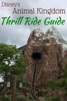 Visiting Walt Disney World and want the best tips for thrill rides? Get the scoop on the most thrilling choices in Disney's Animal Kingdom: Kali River Rapids and Expedition Everest.