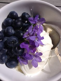 Morning yoghurt wish blueberries and violets. Violets, Blueberries, Breakfast, Morning Coffee, Blueberry, Morning Breakfast