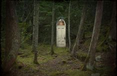 "Option One:      Option Two: ""While walking through the woods one day I came across a mysterious door. What was I to do?""     Option Two: Where does this door go? Who lives behind the door? What is it doing in the middle of the woods?"