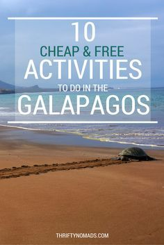 Galapagos is often viewed to be expensive, but the truth is, it can be done on the cheap. Here's how to cut costs and see the Galapagos Islands on a budget!