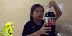Michael Bay's New Cola. I love the bird running in sow motion! :) #gifs #gif #relatablegif <......<MW>...