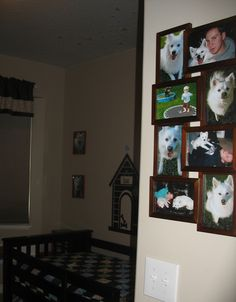 Photos of our family and dogs.