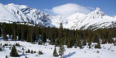 Les Parcs des montagnes Rocheuses canadiennes, Alberta et Colombie-Britannique Canada, Parcs, Road Trip, Mountains, Nature, Travel, Canadian Rockies, Rocky Mountains, British People