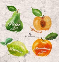 Drawn watercolor fruits vector design set 03 - https://www.welovesolo.com/drawn-watercolor-fruits-vector-design-set-03/?utm_source=PN&utm_medium=welovesolo59%40gmail.com&utm_campaign=SNAP%2Bfrom%2BWeLoveSoLo