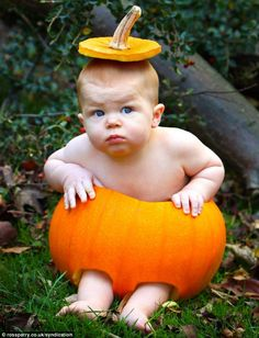 This adorable picture shows nine-month-old Cole Thornton getting into the Halloween spirit - by posing happily in a carved-out pumpkin
