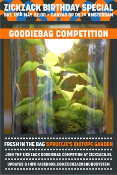 Fresh in the bag: a TABLETOP CLOSED BIOTOPE GARDEN garden by the one they call Spruitje,,! Go and meet the funky gardener and visit http://spruitje.nu/ for those who can't get a grip on this baby...  To win all this goodies - go to http://zickzack.nl/