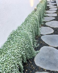 Striking Backyard ideas - Incredibly brilliant yard tips. small backyard ideas townhouse marvellous example id 8287974216 generated on 20190304 Garden Retaining Wall, Landscaping Retaining Walls, Front Yard Landscaping, Small Retaining Wall, Landscaping Ideas, Back Gardens, Outdoor Gardens, Rock Wall Gardens, Landscape Design