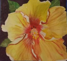 Yellow Hibiscus Watercolor 10.5x9.5 Unframed $45