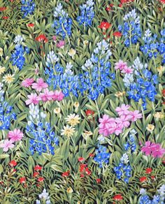 Moda Fabric By the Yard - WILDFLOWERS VI - 32810-11 - Multi Color Floral