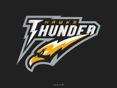Thunder Hawks by Ioann Caelum