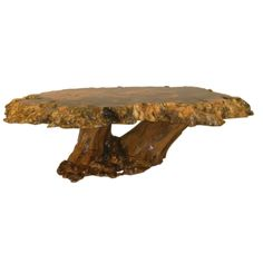 Vintage Cross Sectioned Tree Trunk & Root Coffee Table