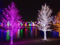 Vitruvian Park Addison,TX