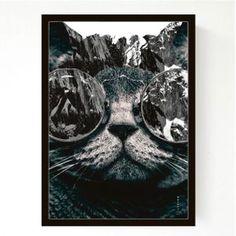 A3 - Photo Cat
