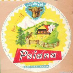 Childhood Memories, The Past, History, Retro, My Love, Pictures, Vintage, Romania, Nostalgia