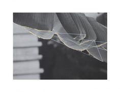 Anna Zuber Hidden Geometry Leaf Commonplaces Art Gallery