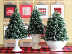 Christmas is over - the artificial garland is looking pretty worn.  Don't throw it away!  Make these Flocked Mini Topiary Trees!  Just think how nice it will be to bring them out next Christmas!