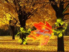 Happy Thanksgiving Wallpaper | HD]Thanksgiving Wallpaper - Happy Thanksgiving[HD] | Wallpapers High ...