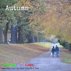 The colours of #autumn