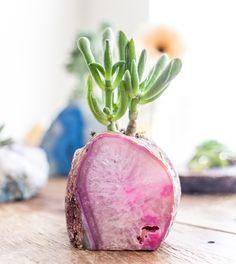 Succulent planter geode amethyst crystal rock plant purple green SoulMakes Blog - Spring Forward