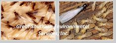 Termitecontrolfl specializes in the fast and effective removal of termites and pest in Deerfield Beach, Florida. Call us at Deerfield Beach Florida, Palm Beach Fl, Termite Pest Control, Termite Inspection, Free