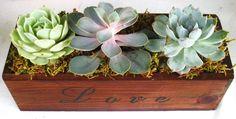 Succulent Centerpiece - Trio of Succulent 'Love'  in Wooden Box Cedar Planter - Perfect Gift Home or Event Decor. $39.00, via Etsy.