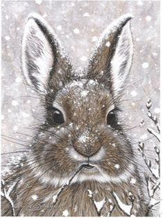 ❧ Illustrations Petits lapins ❧ by Marjolein Bastin. This was my Christmas card a few years ago! Animal Paintings, Animal Drawings, Art Drawings, Easter Drawings, Lapin Art, Marjolein Bastin, Rabbit Art, Rabbit Drawing, Bunny Art